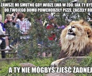 Biedny lew