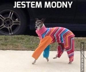 Jestem modny