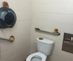 Może tosta?