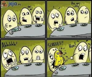 Jajeczny obcy