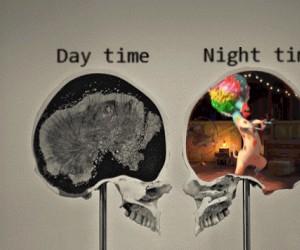 Mózg: dzień vs noc