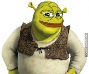 Pepe jest miłością, Pepe jest życiem
