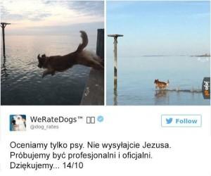 Ty tam, zejdź z tej wody!