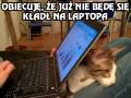 Zemsta laptopa