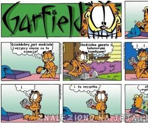 Garfield: Niedzielna gazeta