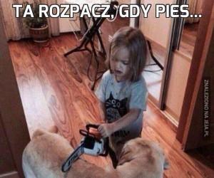 Ta rozpacz, gdy pies...