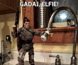 Gadaj, elfie!