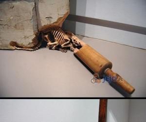Kości wyrzeźbione z rzeczy codziennego użytku