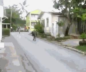 Umiesz jeździć bez trzymanki? Pfff, zobacz na to!