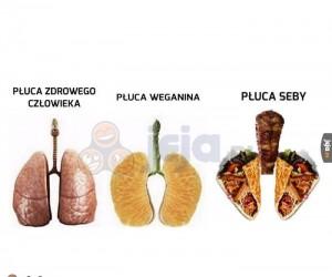 Płuca z kebabu