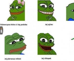 Kolejna żaba w internecie