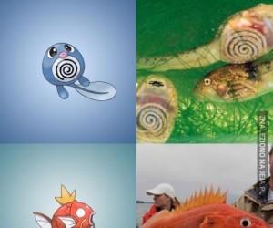 Pokemony wzorowane na prawdziwych stworzeniach