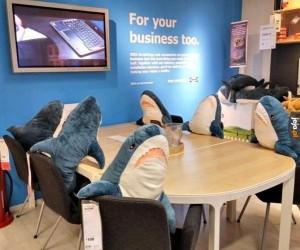 Prawdziwe rekiny biznesu