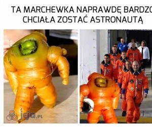 Marchew Armstrong