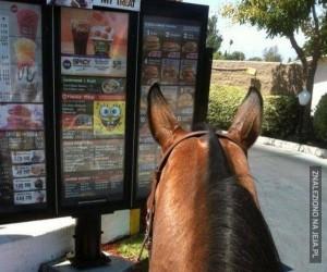 Co by tu zamówić?