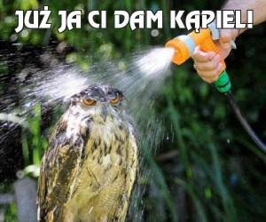 Już ja Ci dam kąpiel!