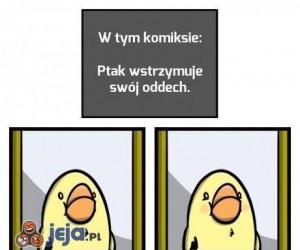 Komiks o ptaszku