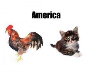 Ameryka vs Japonia