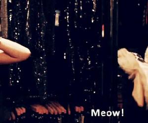 Definicja internetu: koty + Emma Watson