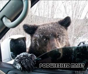 Podwieziesz mnie?