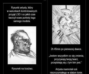 Wpływ LSD na ludzi