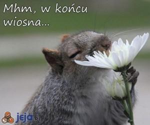 W końcu wiosna...
