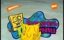Spongebob od tyłu