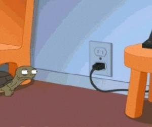 Najczystsze zło w żółwiej postaci