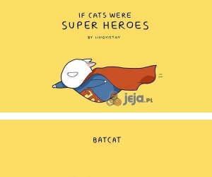 Gdyby koty były superbohaterami...