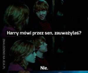 Co tam u Harry'ego?