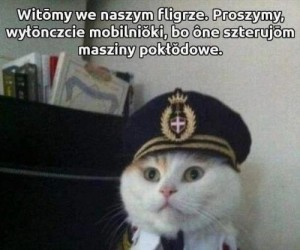 Koteł pilotem