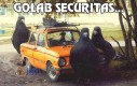 Gołąb Securitas...
