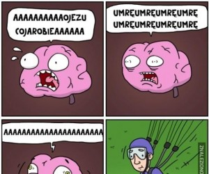 Mózg panikarz