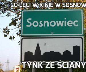 Co leci w kinie w Sosnowcu?