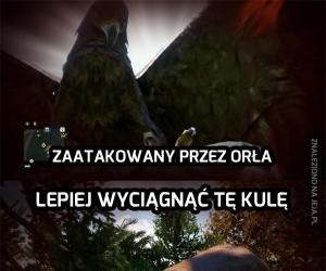Logika w Far Cry 4
