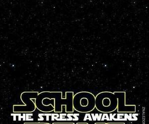 Przebudzenie stresu