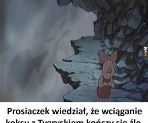 Nieodpowiedzialny Prosiaczek