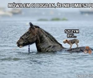 Mówiłem ci Bogdan, że nie umiesz pływać