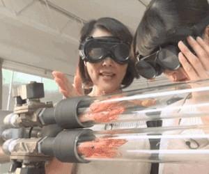 Ekspresowe krewetki