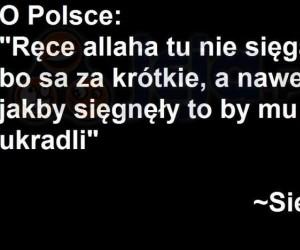 Sami widzicie, Polsce nie grozi islamizacja