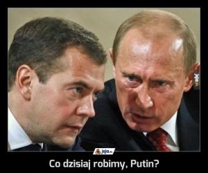 Co dzisiaj robimy, Putin?