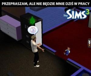 Simsowe problemy