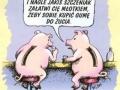 Skarbonki