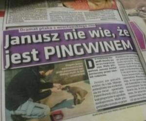 Dramat Janusza