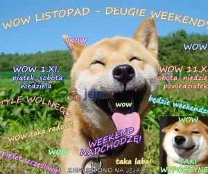 Listopad - długie weekendy!