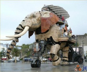 Podróż słoniem
