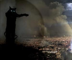 Czas na wojnę kotów!