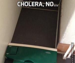 Cholera, no...