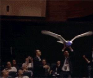 Latający ptak robot