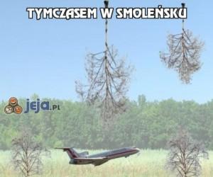 Tymczasem w Smoleńsku